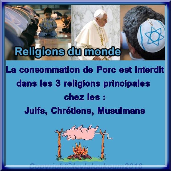 4 Conclusion Les 3 Religions Du Monde Au Sujet Du Porc Les