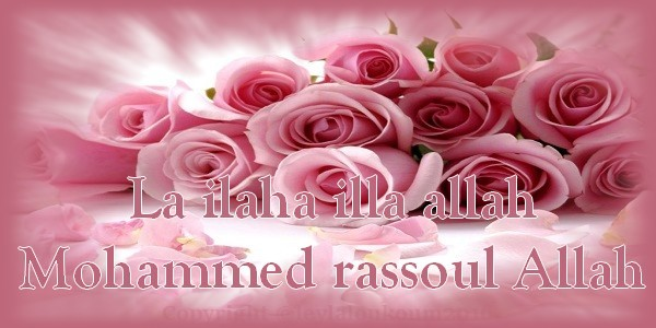 Très ilaha illa allah Mohammed rassoul Allah TM66