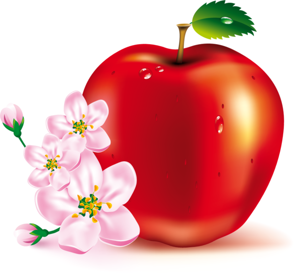 Magnifique histoire de Sabeeth et de la pomme