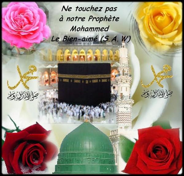 Ne toucher pas à Notre Prophète Mohammed (s.a.w)