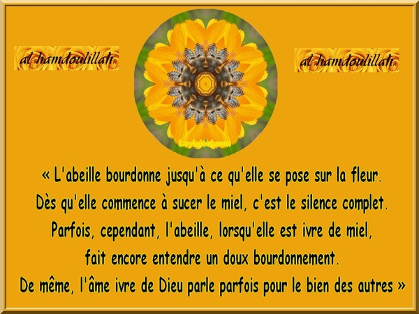 Citation: L'abeille ivre de miel
