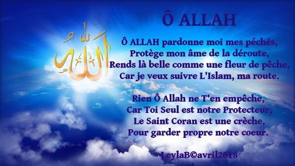 Mon Poème ô Allah Pardonne Moi Mes Péchés Poeme