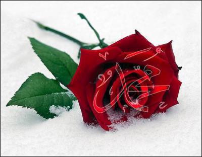 Notre Bien-aimé Prophète MOHAMMED (paix sur lui)