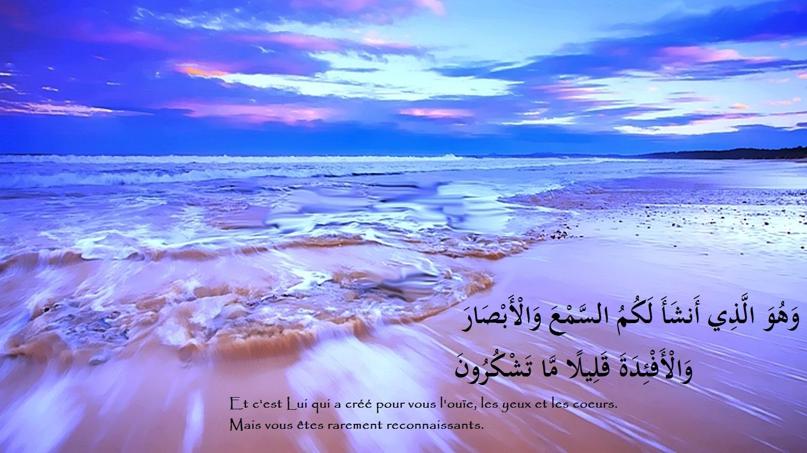 Fond ecran islam for Image fond de bureau