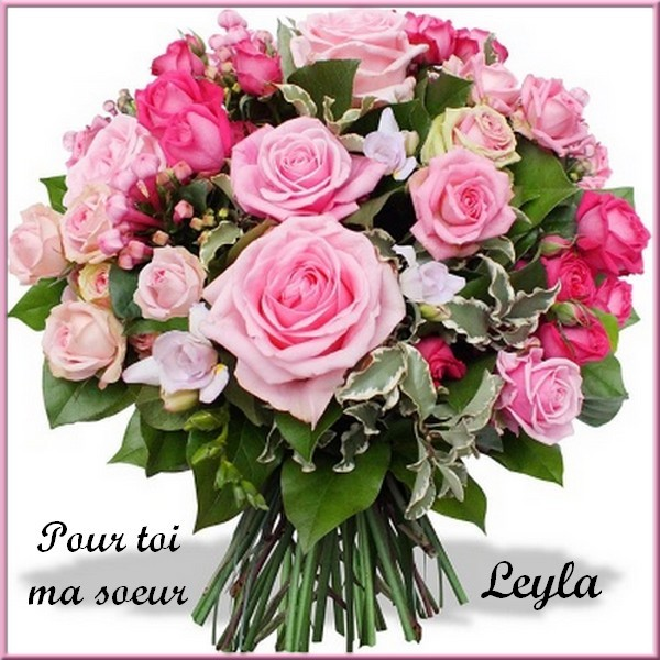 Cado de mes amies amis merci for Bouquet a domicile