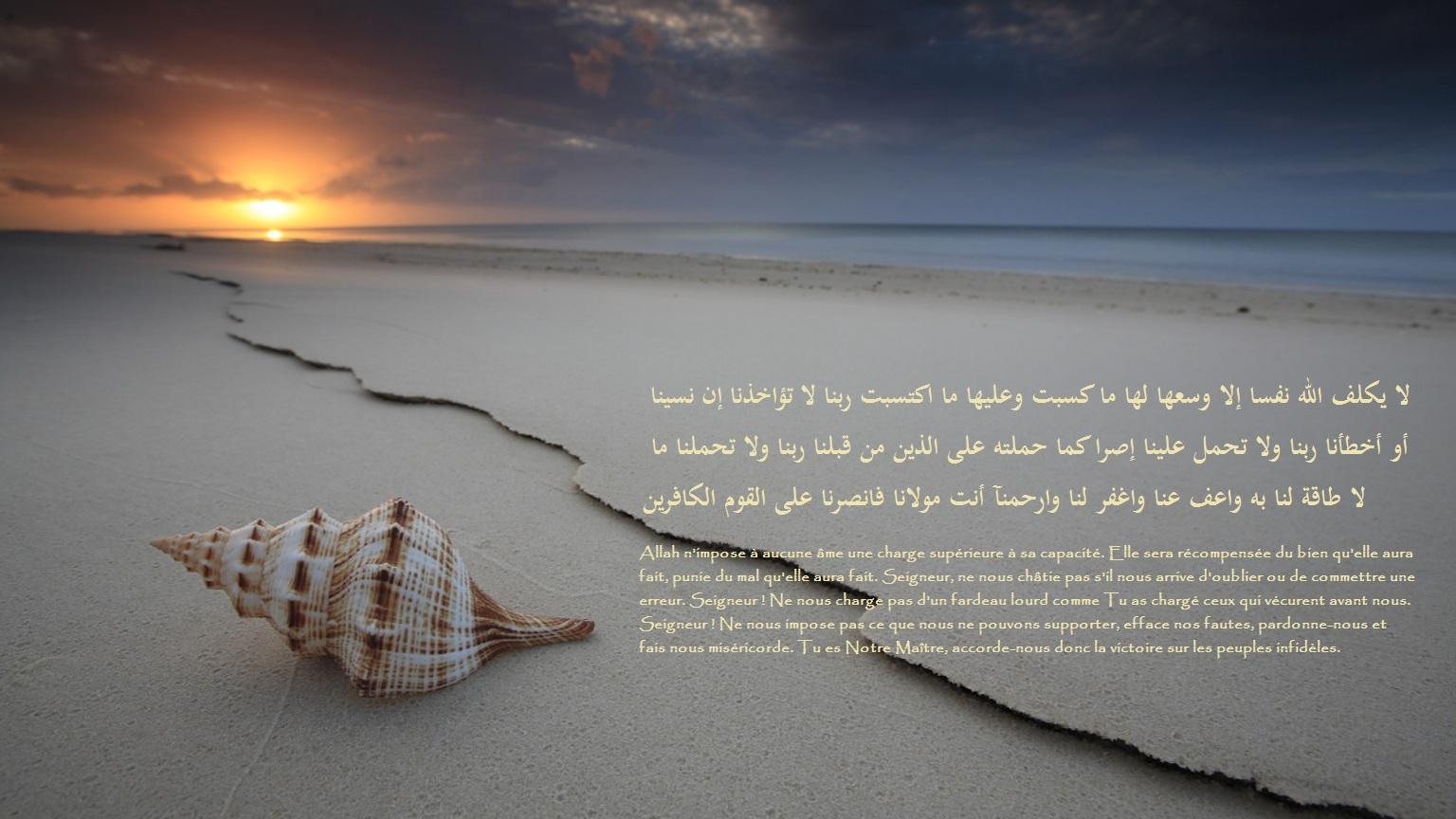 fond ecran islam - Page 6